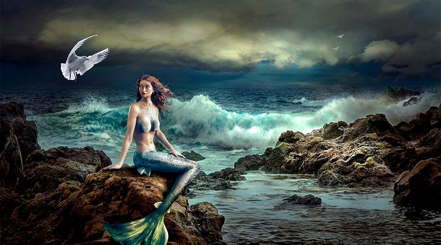 sirena en los arrecifes de la playa